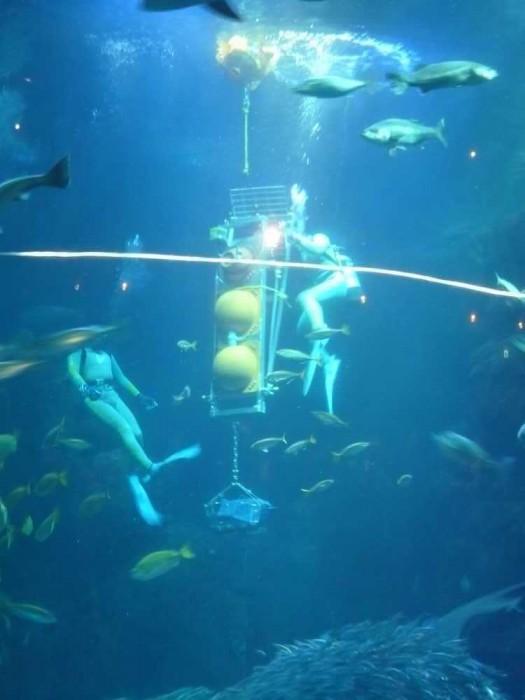 深海探査機「江戸っ子1号」