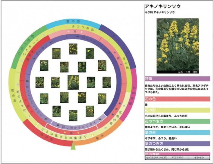 植物図鑑 システム